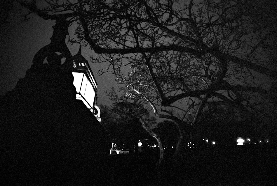 Nighttime on the Capitol grounds -- Washington, DC (January 2015)Leica M7 + Ilford XP2 + Leica Summilux 21/1.4 ASPH